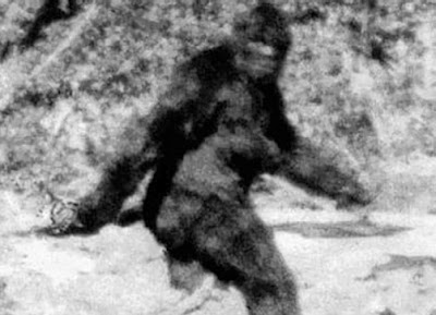 A still taken from Roger Patterson's film of Bigfoot.