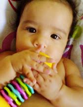 Minha Princesa Sofia