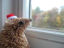 Por mi ventana...
