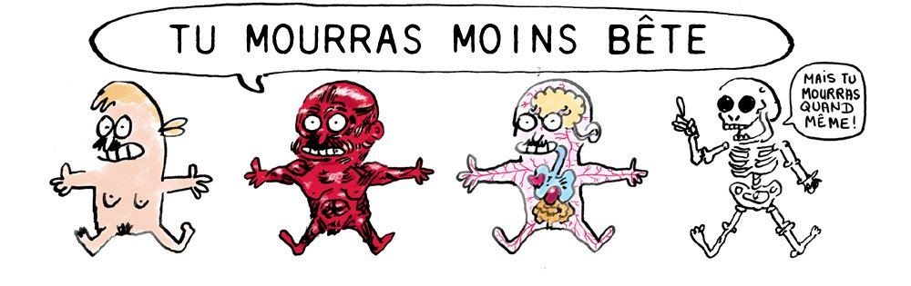 Tu mourras moins bte