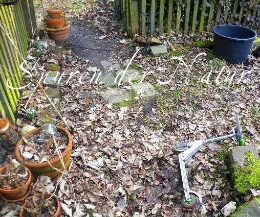 Mittel Gegen Schnecken Im Garten: Pfiffigstes Häkelblog: Garten, Lebermoos Und Schnecken