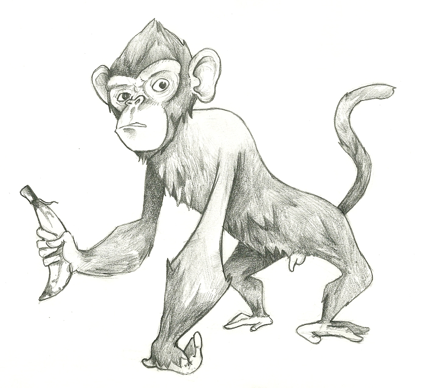 Welcome to da whimsiblog - Dessin de singe facile ...