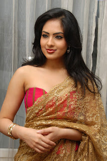Nikesha Patel Spicy Pictures