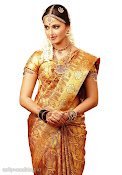 Anushka Shetty in Silk Saree for Chennai Silks Photo Shoot-thumbnail-6
