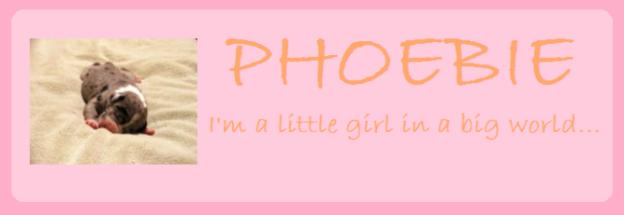 Phoebie's Blog