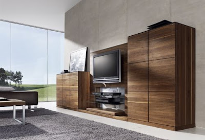 Wooden Cabinet Living Room Interior