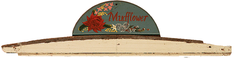 Mudflower