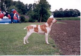 Zuccara ( Zoë ) 5 mei 2000