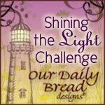 Shining the Light Challenge Award