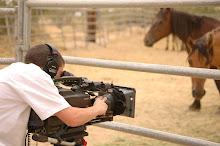 Filming Sulphur Springs Mares