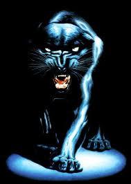 Herrera Panthers
