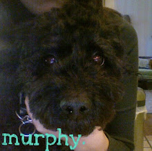murphy