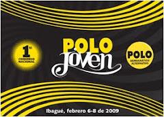 Declaracion 1er Congreso Nacional Polo Joven