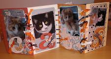 CATS (we zijn zo mooi!)