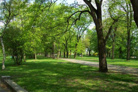 imagen parque vida: