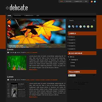 Delicate blogger template for wordpress theme. image slideshow blog template.image slideshow blogspot template blog. clean game template blog