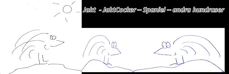 Jakt & JaktCocker - Spaniel & andra hundraser