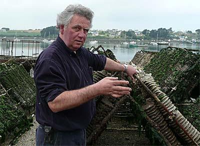 Yvon Madec, le pape de la Prat-Ar-Coum, une huître incomparable !