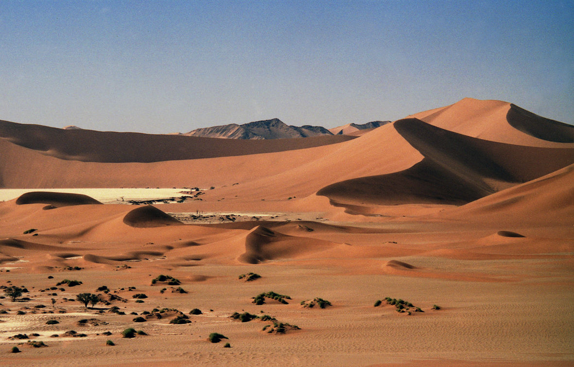 What is the dune: the meaning of the word, interesting facts and photos 16