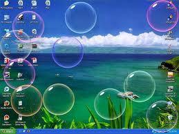protectores de pantalla para wimdoms  xp