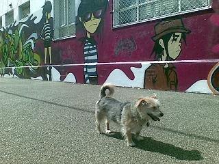 Daisy Mae standing by Gorillaz wall art