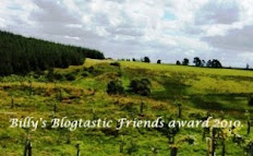 Blogtastic Friend&#39;s award