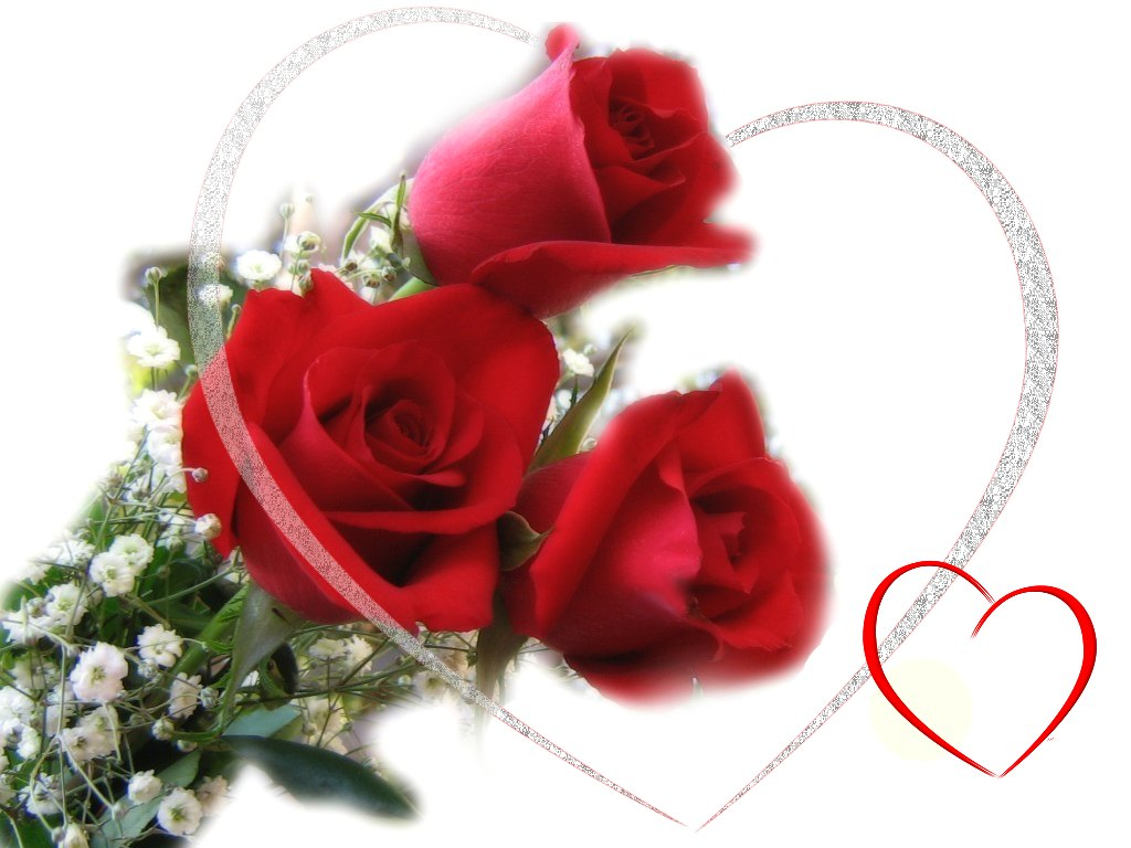 Valentines Day Red Roses E Cards