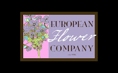 European Flower Company, your local Weymouth MA florist
