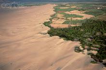 Campos de cultivo en el desierto lima