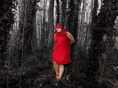 """la forêt,mon jardin"""
