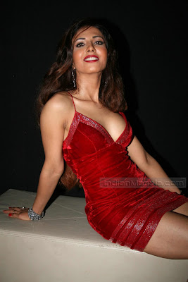 PURE MASALA BLOG:Hot Exotic Pitures Of Masala Model Actress Sheena Nayyar