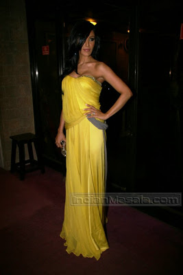 Koena Mitra in Hot yellow Dress gown at I Am She 2010 finals