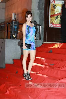 Bollywood Model Actress Shazahn Padamsee at film Dabangg premiere