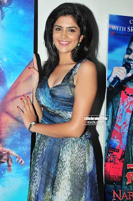South Actress Masala Hot DEEKSHA SETH Photos From an Event