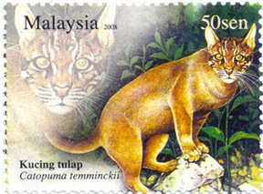 Nocturnal Animal 50sen Golden Cat Stamp