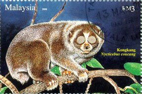 Nocturnal Animal RM3 Slow Loris Stamp