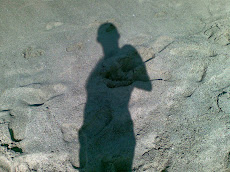 La mia ombra.