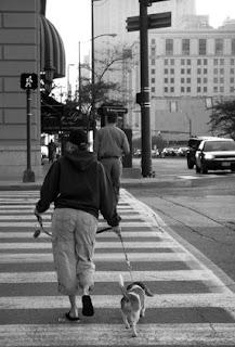 Walking The Dog On Walk