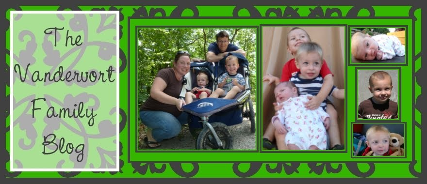 The Vandervort Family Blog