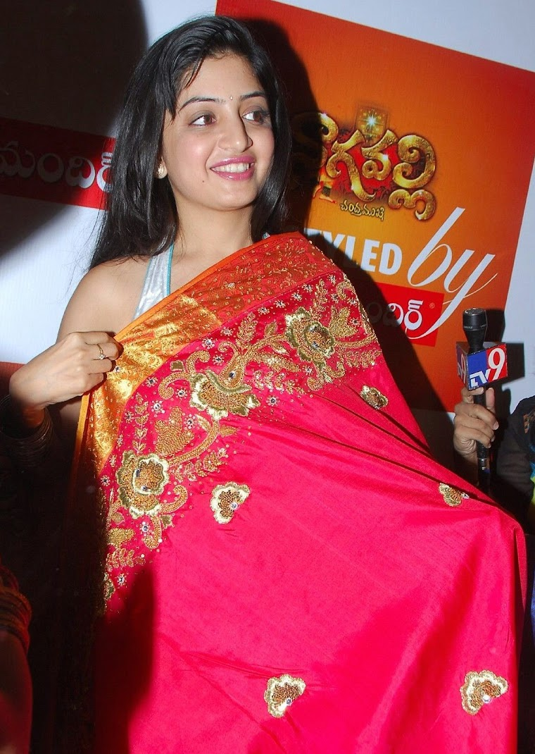 Poonam Kaur Hot Pics in Silk Saree