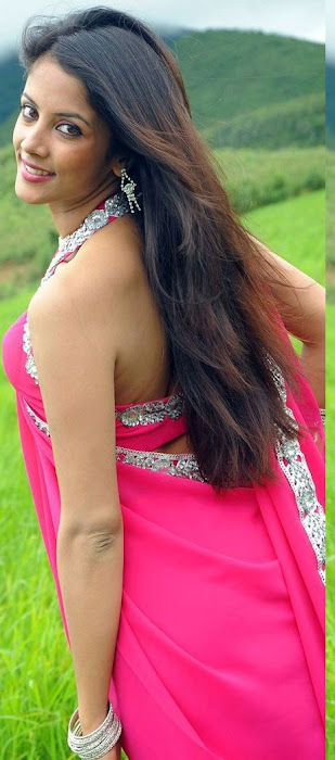 rithika in pink saree hot images