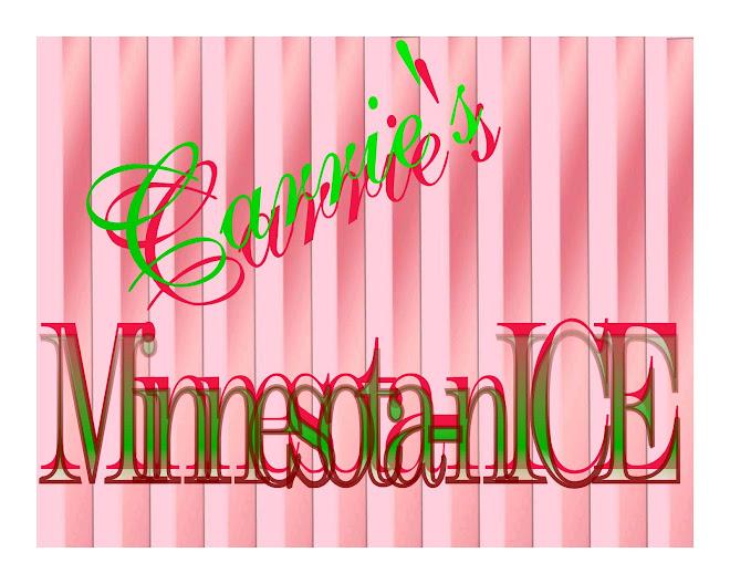 Carrie's Minnesota-nICE