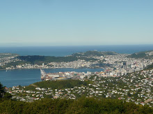 Wellington from afar