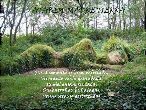 Somos Conciencia Ambiental