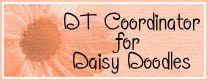 Daisy Doodles Coordinator