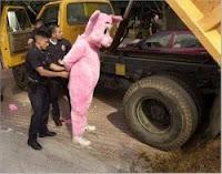 prisão, porco, h1n1