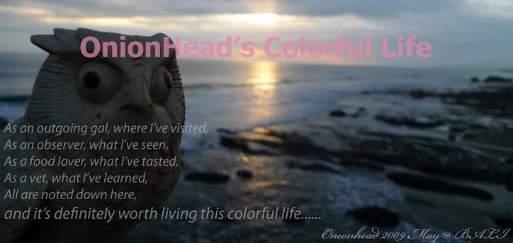 OnionHead's Colorful Life