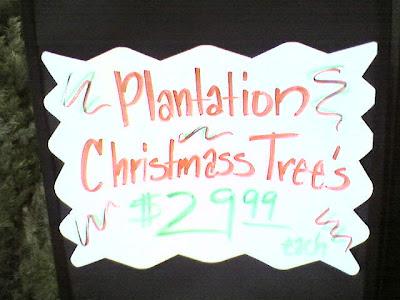 Christmass Tree's