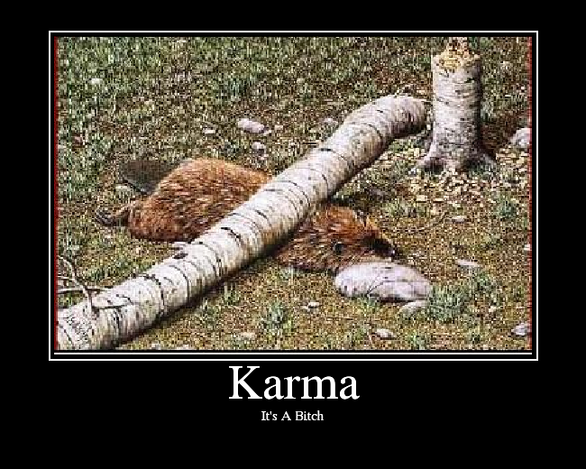 quotes about karma. Buddha Quotes On Karma.