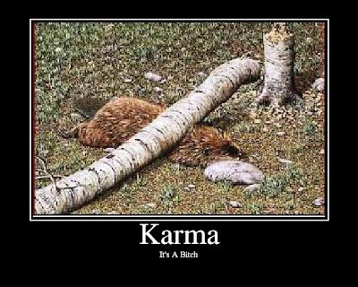 karma3.png